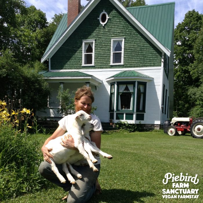 Ontario Farm Sanctuary